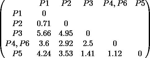 \begin{pmatrix} & P1 & P2 & P3 & P4,P6 & P5 \\ P1 & 0 \\ P2 & 0.71 & 0 \\ P3 & 5.66 & 4.95 & 0 \\ P4,P6 & 3.6 & 2.92 & 2.5 & 0 \\ P5 & 4.24 & 3.53 & 1.41 & 1.12 & 0 \\ \end{pmatrix}