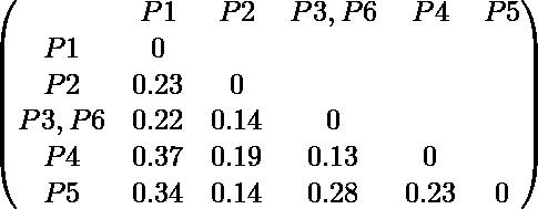 \begin{pmatrix} & P1 & P2 & P3,P6 & P4 & P5 \\ P1 & 0 \\ P2 & 0.23 & 0 \\ P3,P6 & 0.22 & 0.14 & 0 \\ P4 & 0.37 & 0.19 & 0.13 & 0 \\ P5 & 0.34 & 0.14 & 0.28 & 0.23 & 0 \end{pmatrix}
