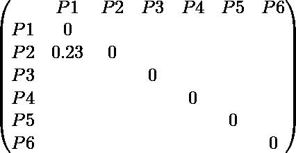 \begin{pmatrix} & P1 & P2 & P3 & P4 & P5 & P6 \\ P1 & 0 \\ P2 & 0.23 & 0 \\ P3 & & & 0 \\ P4 & & & & 0 \\ P5 & & & & & 0 \\ P6 & & & & & & 0 \\ \end{pmatrix}