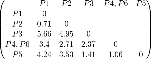 \begin{pmatrix} & P1 & P2 & P3 & P4,P6 & P5 \\ P1 & 0 \\ P2 & 0.71 & 0 \\ P3 & 5.66 & 4.95 & 0 \\ P4,P6 & 3.4 & 2.71 & 2.37 & 0 \\ P5 & 4.24 & 3.53 & 1.41 & 1.06 & 0 \\ \end{pmatrix}