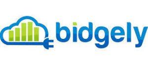 Bidgely_Logo