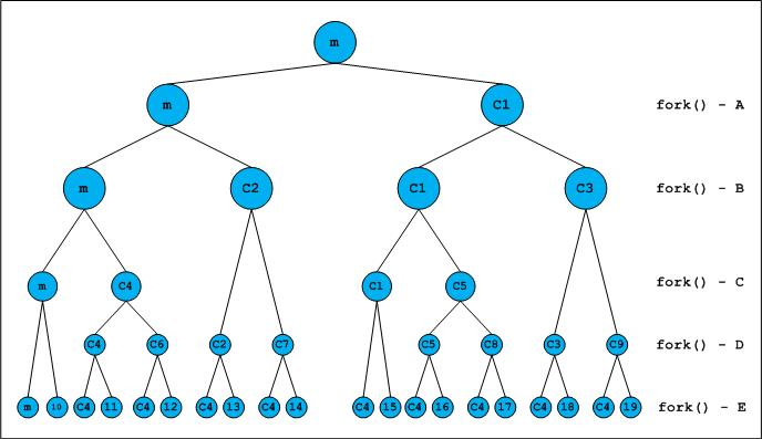 fork   and binary tree   geeksforgeeksthe following diagram provides pictorial representation of fork ing new processes  all newly created processes are propagated on right side of tree
