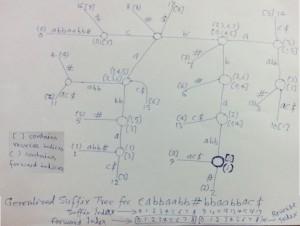 Suffix Tree Application