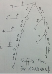 Suffix Tree Application